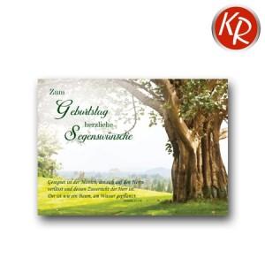 Postkarte Geburtstag 41-0135